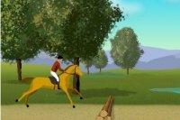 Cavallo di Castagno