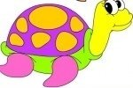Colora le tartarughe