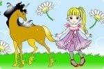 Colora i cavalli