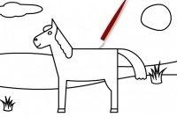 Colora il cavallo