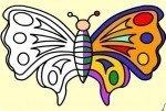 Colora la farfalla