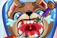 Il dentista dei cuccioli