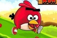 La corsa degli Angry Birds