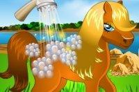 Lava il tuo Pony