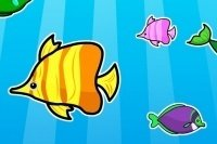 Memory pesci