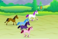 Pony Jockey