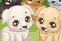 Prenditi cura del Labrador
