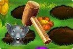 Sisi il cacciatore di topi