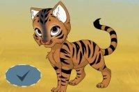 Il Mio Gattino